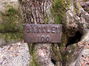 The Barkley Marathons at Frozen Head State Park; all photos are a little small. 3x2